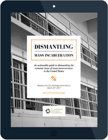 Dismantling Mass Incarceration eBook